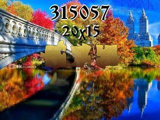 Puzzle №315057