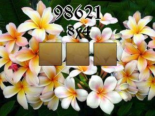 Puzzle №98621