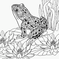 Coloring Page №253393