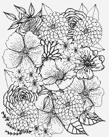 Coloring Page №165148