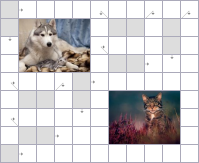 Crossword №53917