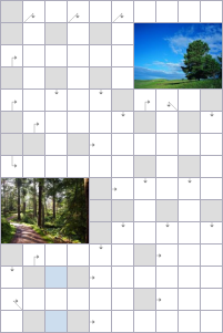 Crossword №53956