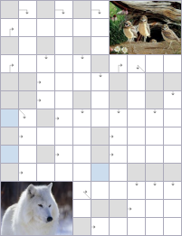 Crossword №53996