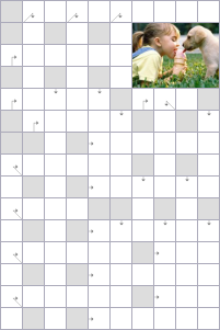 Crossword №53997