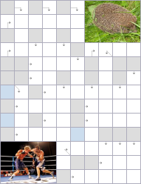 Crossword №54445