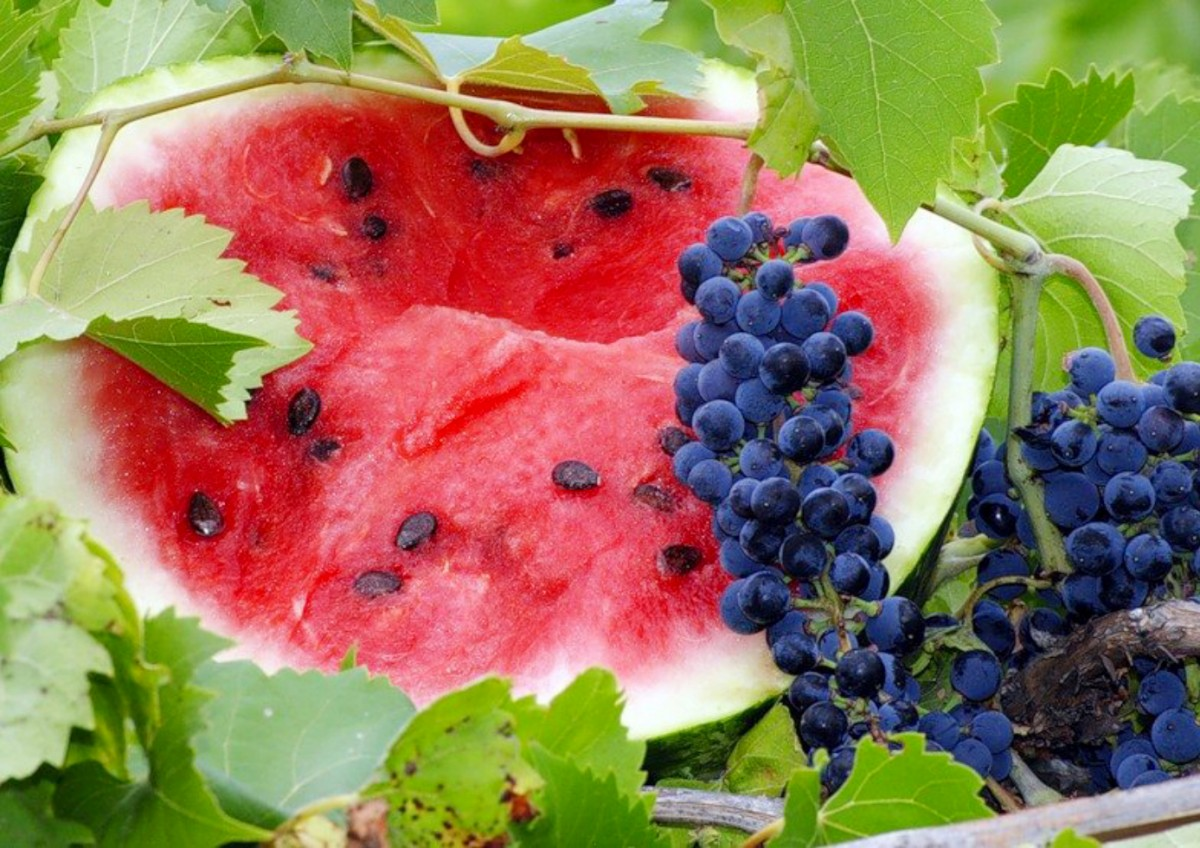 Jigsaw Puzzle Solve jigsaw puzzles online - Watermelon and grapes