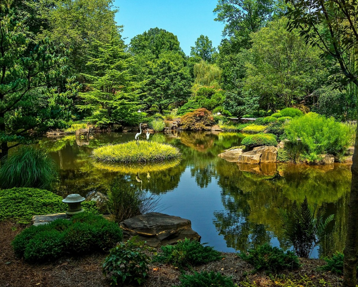 Jigsaw Puzzle Solve jigsaw puzzles online - Botanical garden