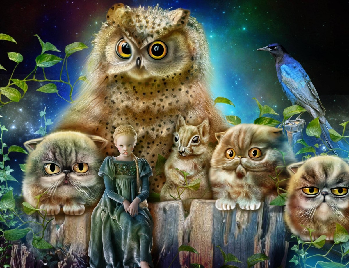 Jigsaw Puzzle Solve jigsaw puzzles online - The girl and the owl