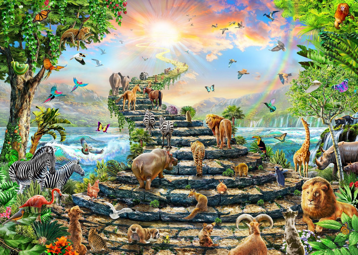 Jigsaw Puzzle Solve jigsaw puzzles online - Road to the sun