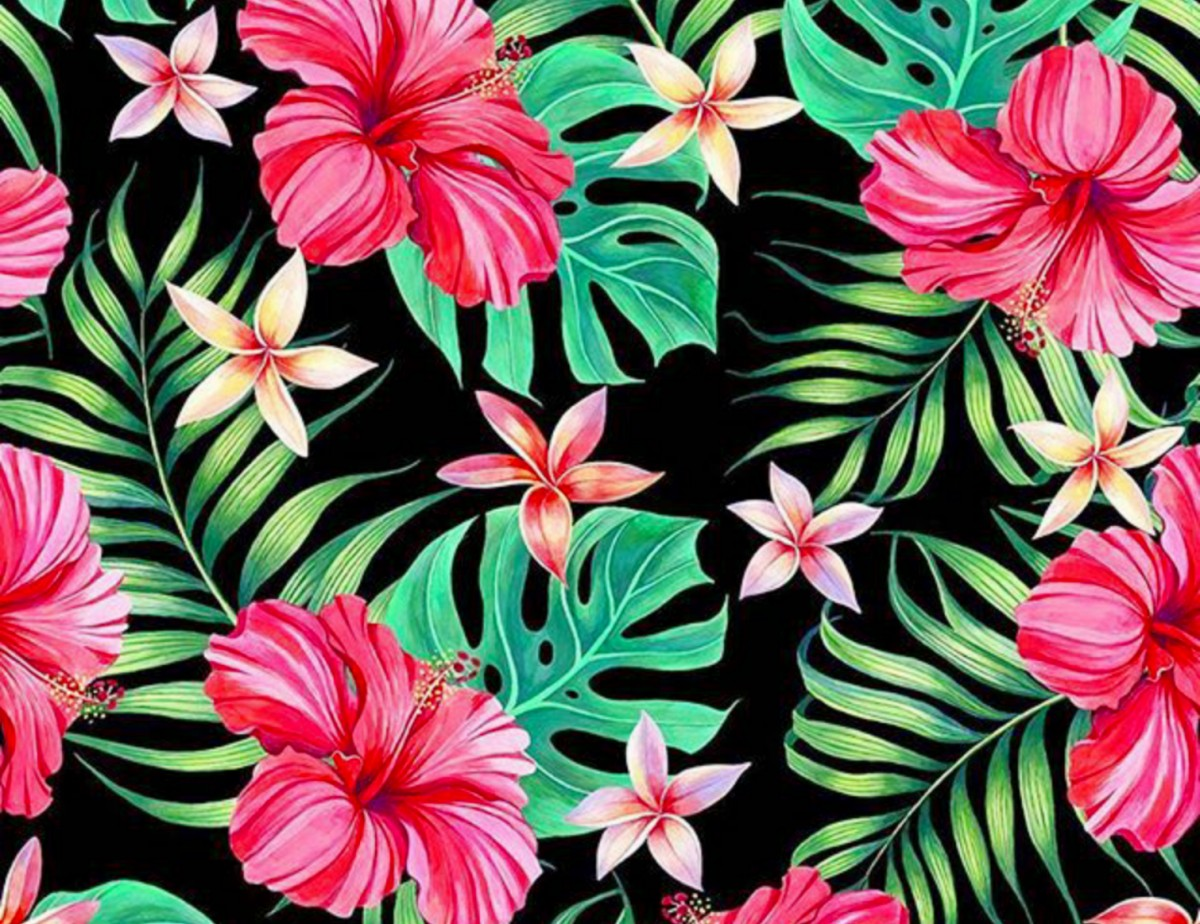 Jigsaw Puzzle Solve jigsaw puzzles online - Hibiscus and plumeria