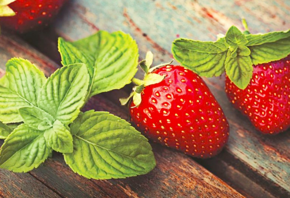 Jigsaw Puzzle Solve jigsaw puzzles online - Strawberry and mint
