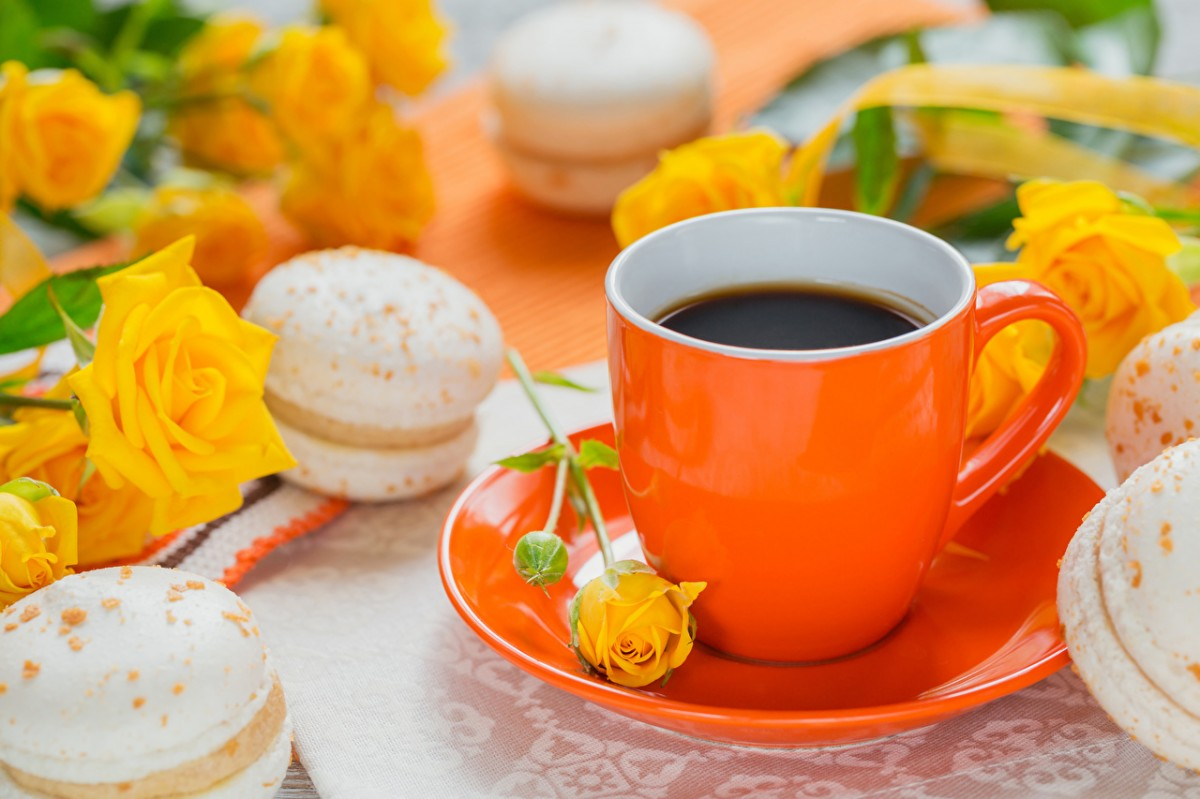 Jigsaw Puzzle Solve jigsaw puzzles online - Coffee with roses