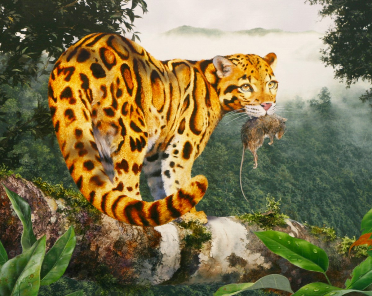 Jigsaw Puzzle Solve jigsaw puzzles online - Leopard with prey
