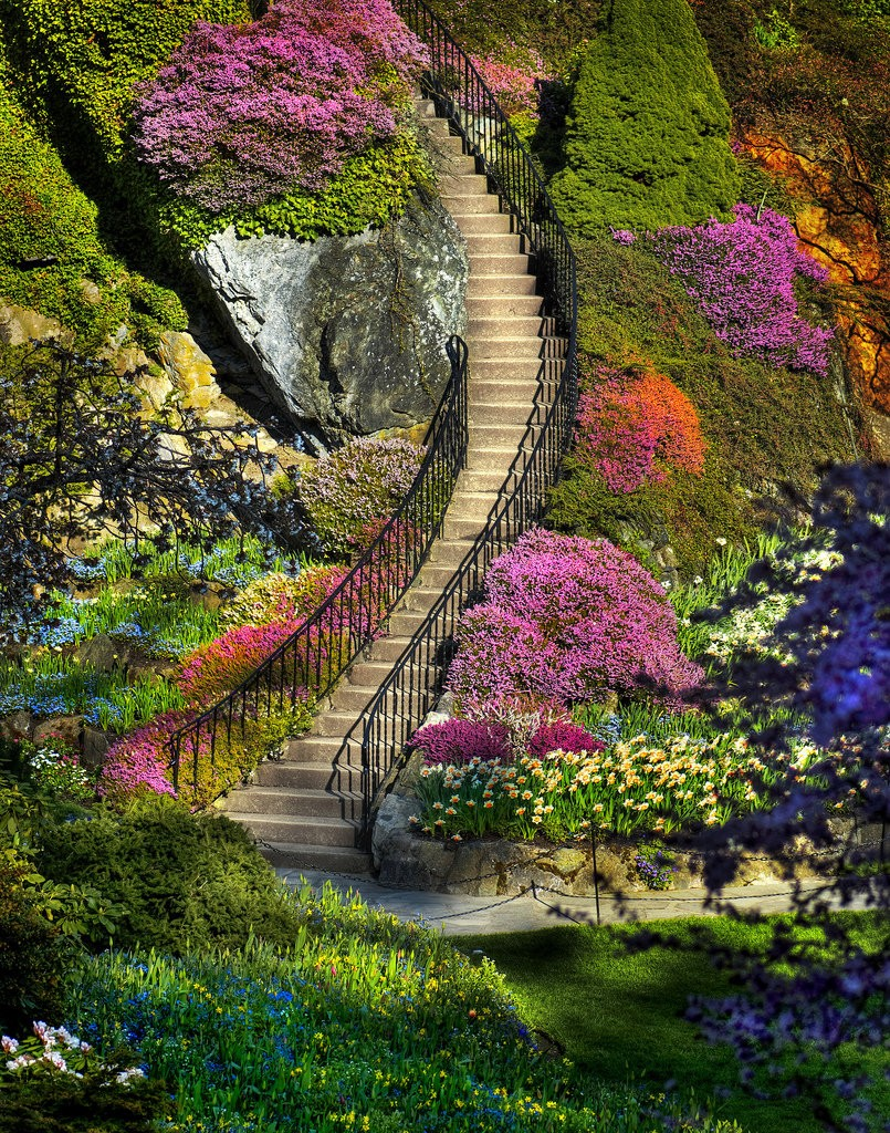 Jigsaw Puzzle Solve jigsaw puzzles online - Stairway to heaven