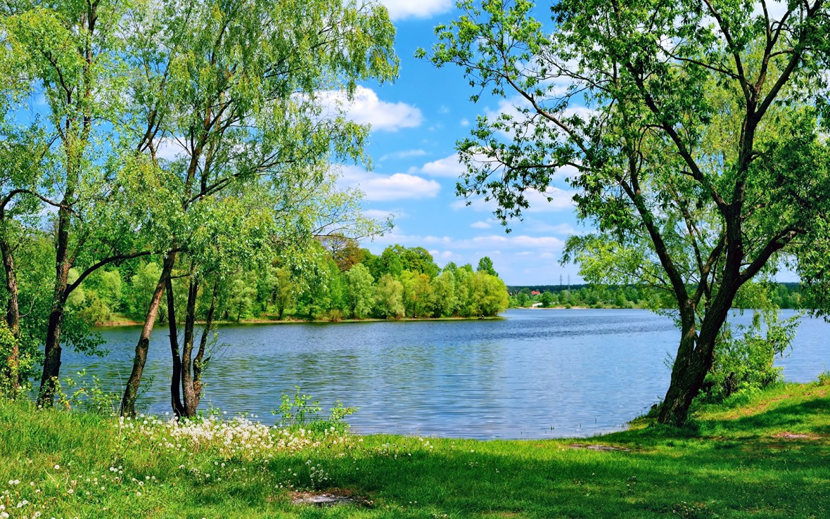Jigsaw Puzzle Solve jigsaw puzzles online - Summer day