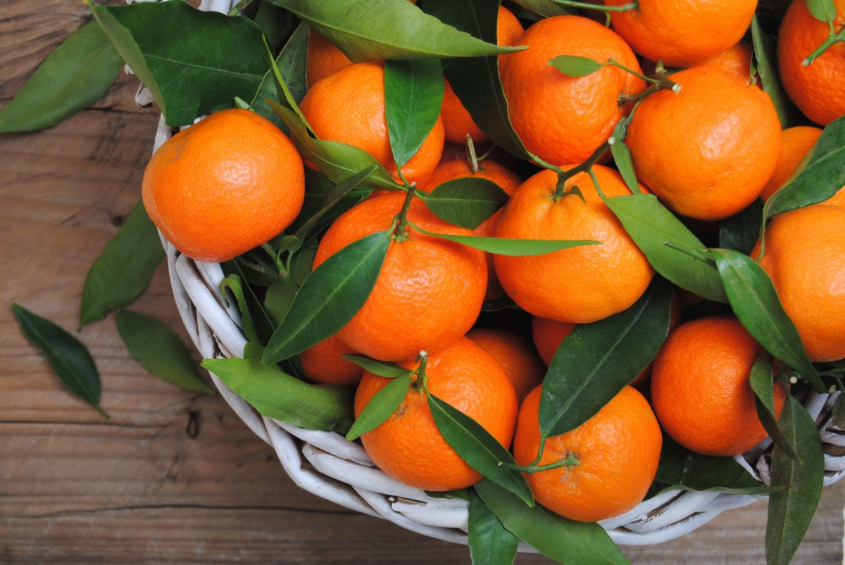 Jigsaw Puzzle Solve jigsaw puzzles online - Tangerines
