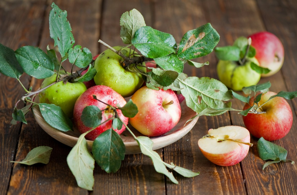 Jigsaw Puzzle Solve jigsaw puzzles online - Still life with apples