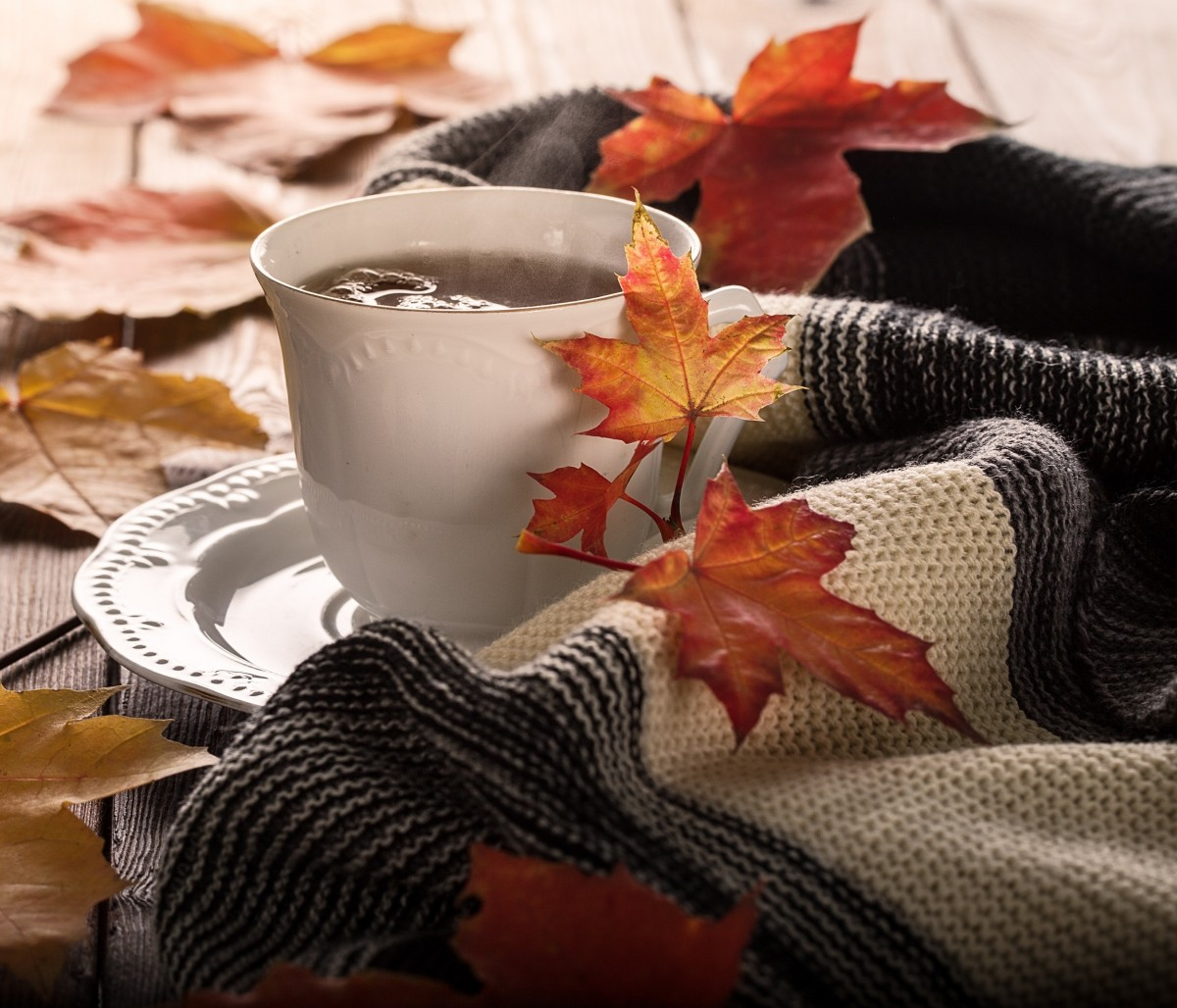Jigsaw Puzzle Solve jigsaw puzzles online - Autumn drink