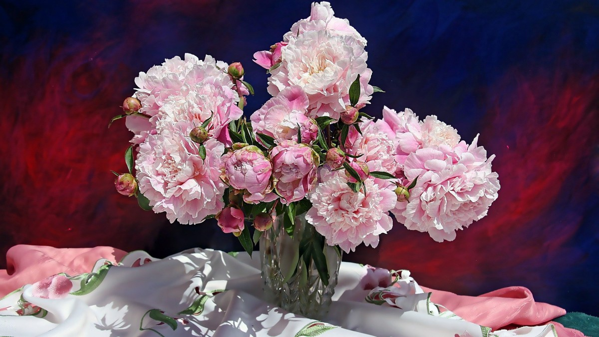 Jigsaw Puzzle Solve jigsaw puzzles online - Peonies