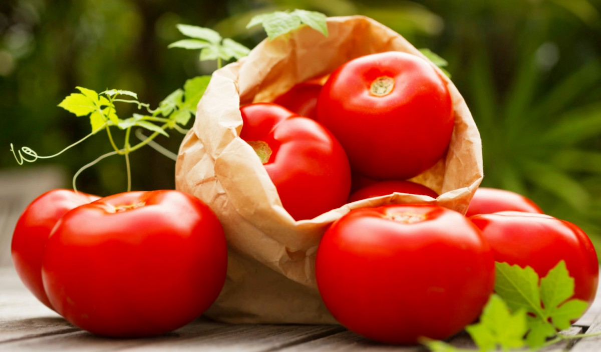 Jigsaw Puzzle Solve jigsaw puzzles online - Tomatoes