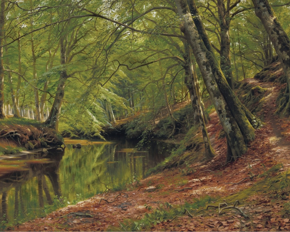 Jigsaw Puzzle Solve jigsaw puzzles online - River in the forest