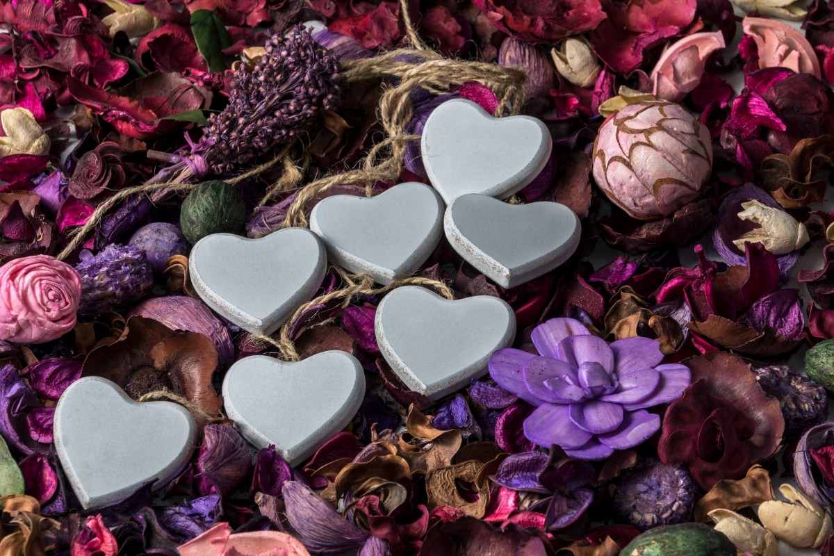 Jigsaw Puzzle Solve jigsaw puzzles online - Hearts and herbarium