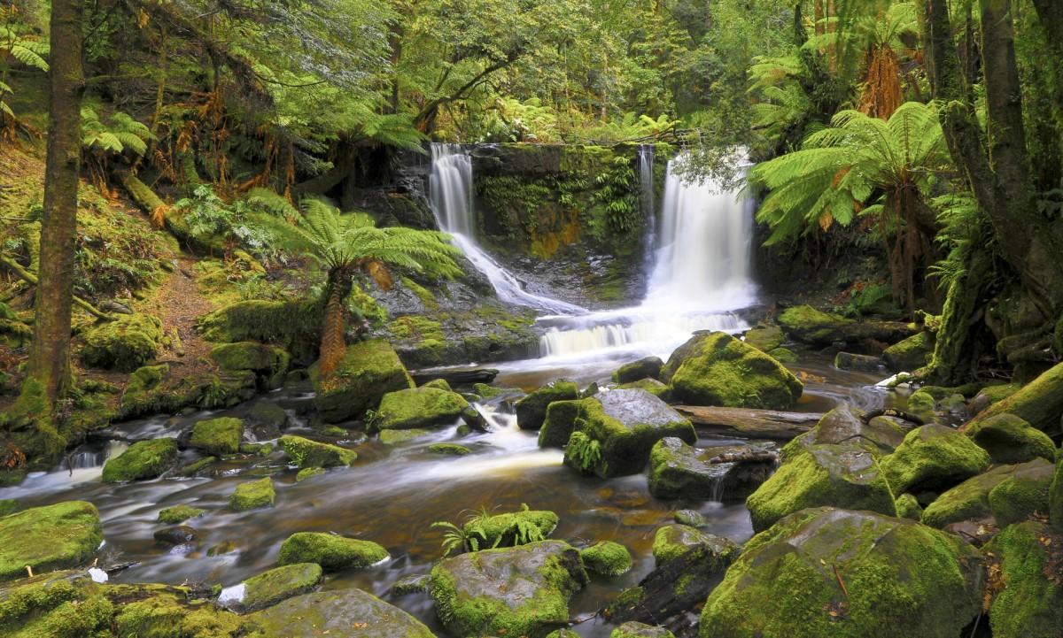 Jigsaw Puzzle Solve jigsaw puzzles online - Tasmanian waterfall
