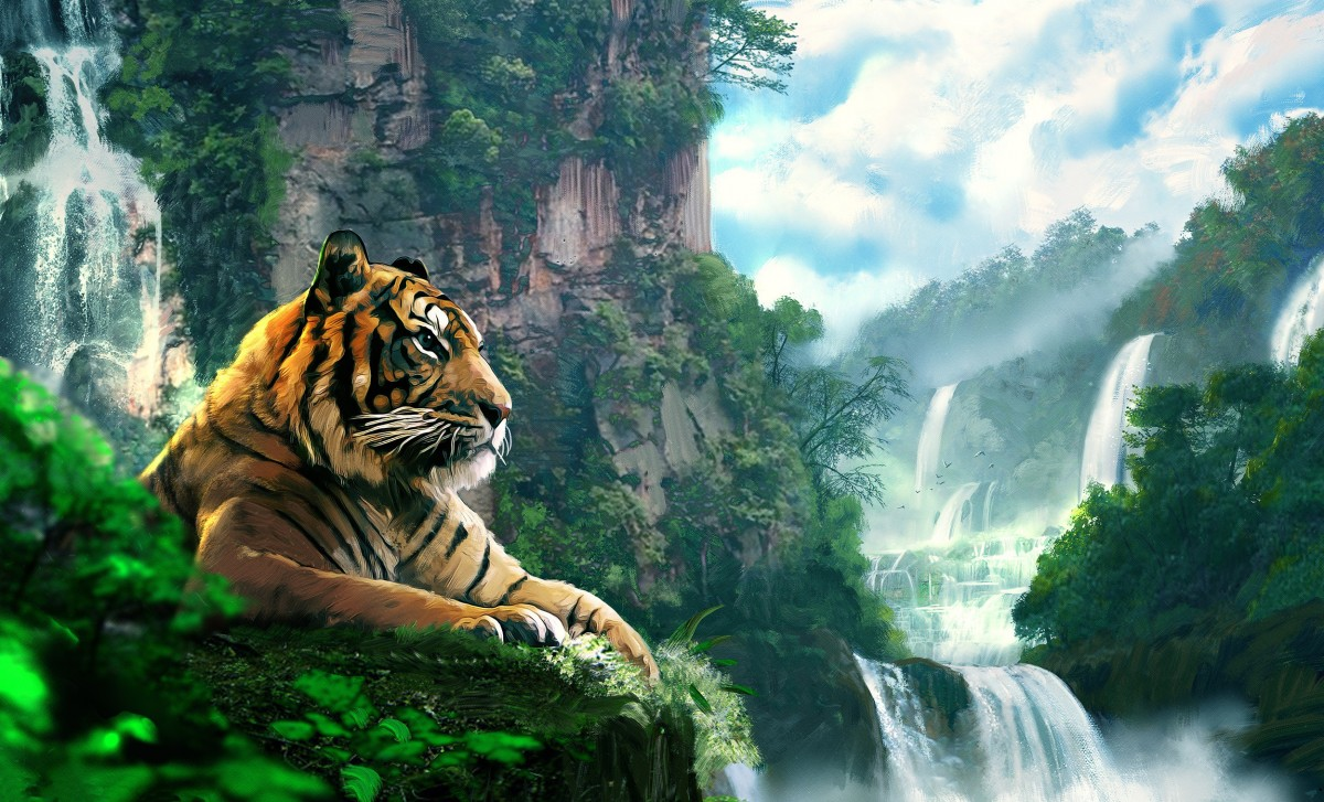 Jigsaw Puzzle Solve jigsaw puzzles online - Tiger at waterfall