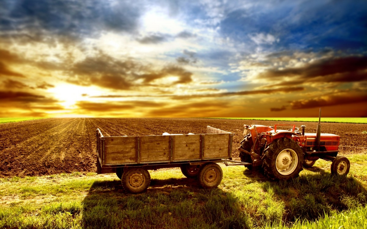 Jigsaw Puzzle Solve jigsaw puzzles online - Tractor in the field