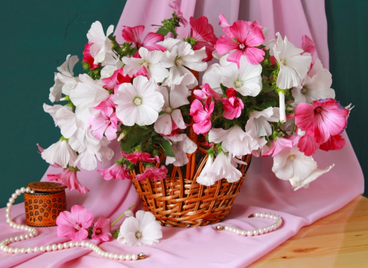 Jigsaw Puzzle Solve jigsaw puzzles online - Flowers and pearls