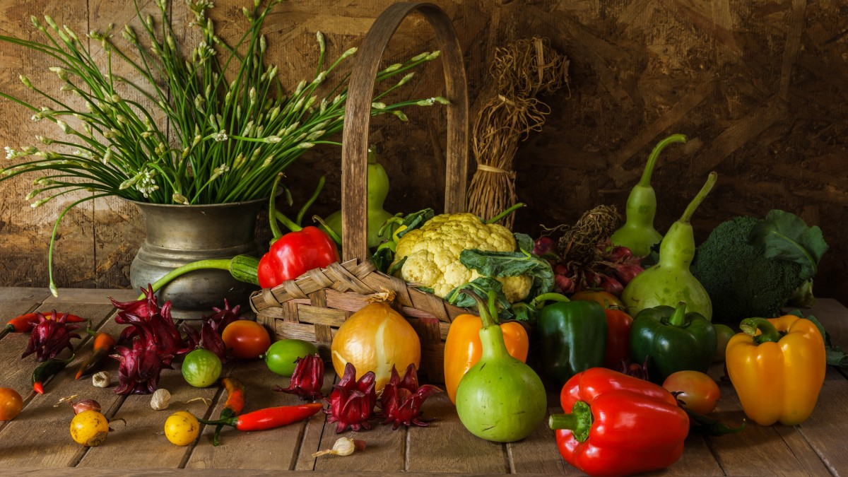 Jigsaw Puzzle Solve jigsaw puzzles online - The harvest of vegetables