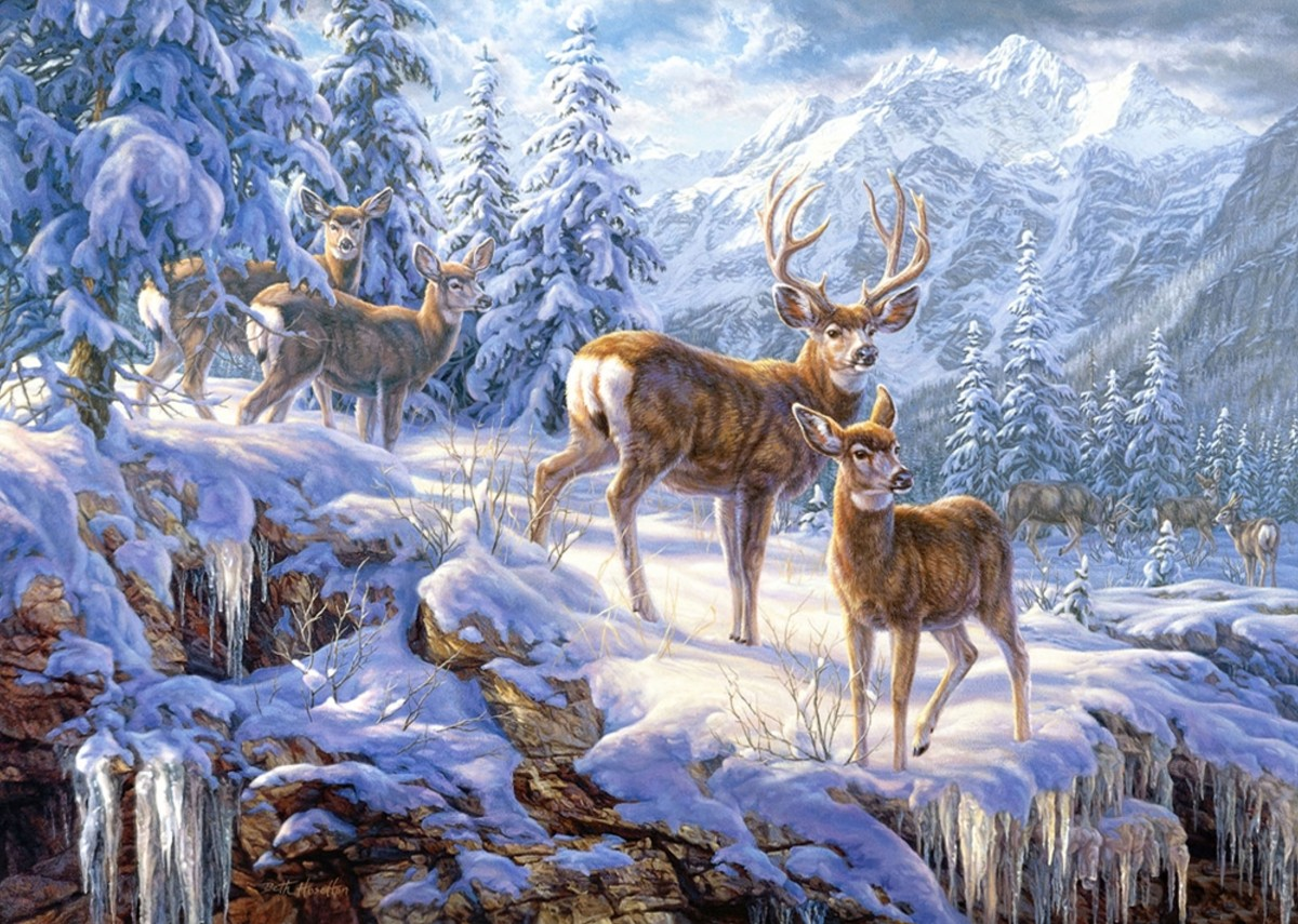 Jigsaw Puzzle Solve jigsaw puzzles online - In the mountain forest