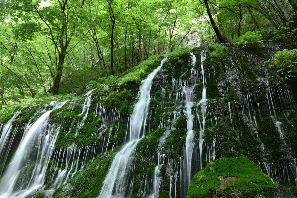 Jigsaw Puzzle Solve jigsaw puzzles online - Waterfall