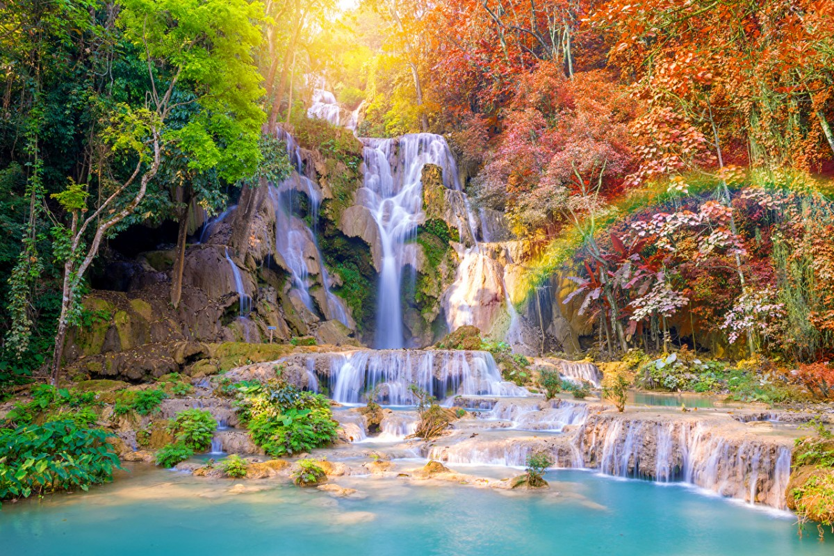 Jigsaw Puzzle Solve jigsaw puzzles online - Waterfall in the tropics