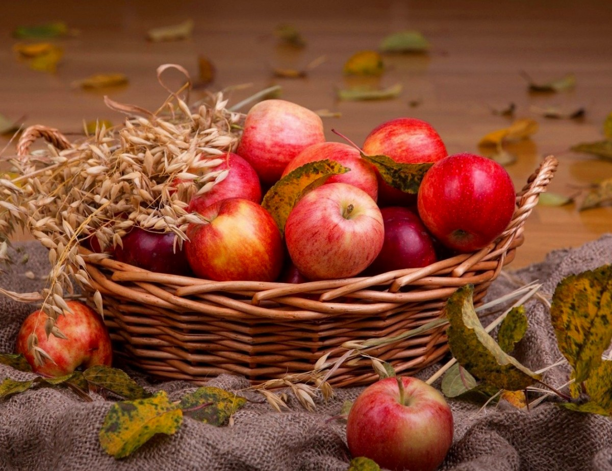 Jigsaw Puzzle Solve jigsaw puzzles online - The apples in the basket
