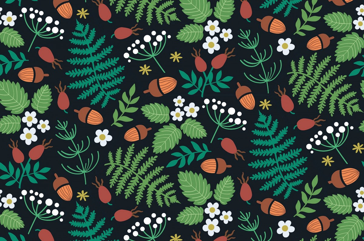 Jigsaw Puzzle Solve jigsaw puzzles online - Acorns and rose hips
