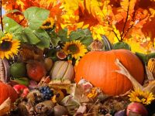 Собирать пазл Harvest of nature онлайн