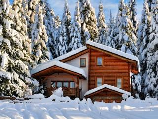 Собирать пазл House in spruce forest онлайн