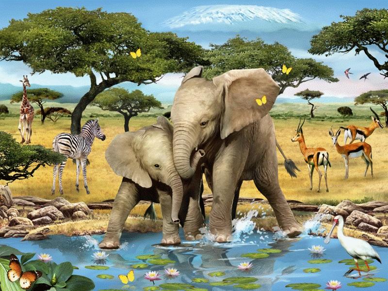 Jigsaw Puzzle Solve jigsaw puzzles online - Dva slonenka