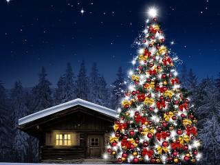 Собирать пазл Spruce at home онлайн