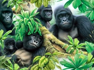 Собирать пазл Gorillas онлайн