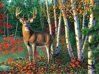 Собирать пазл Forest keeper онлайн