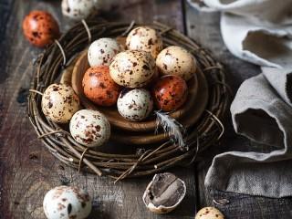 Собирать пазл Candies in the nest онлайн