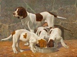 Собирать пазл Feeding puppies онлайн