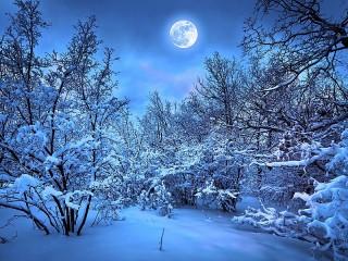 Собирать пазл Blue moon онлайн