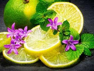 Собирать пазл Lemon and mint онлайн