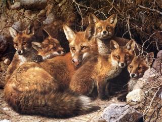 Собирать пазл Fox with cubs онлайн