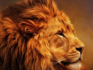 Собирать пазл Lion's profile онлайн