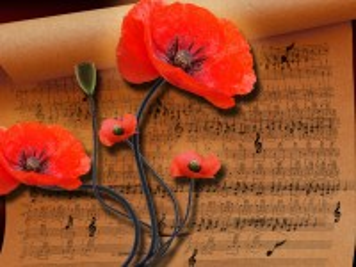Собирать пазл Poppies and notes онлайн