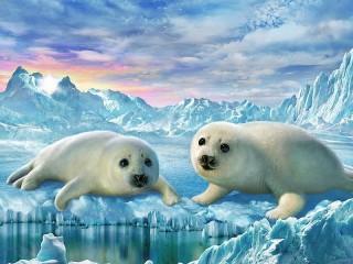 Собирать пазл Little seals онлайн